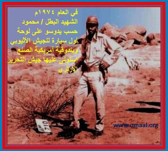 AL Shahed M Hassab.jpg